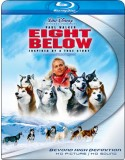 Blu-ray Eight Below