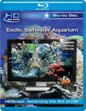 Exotic Saltwater Aquarium