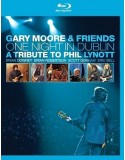 Blu-ray Gary Moore and Friends: One Night In Dublin