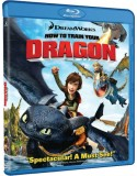 Blu-ray How To Train Your Dragon