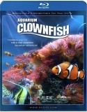 Plasma Art: Clownfish