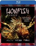 Blu-ray Plasma Art: Lionfish