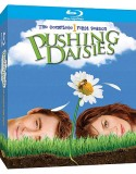 Blu-ray Pushing Daisies: The Complete First Season