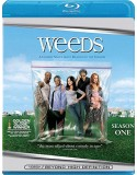 Blu-ray Weeds: Season 1
