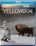Blu-ray Yellowstone